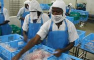 ESSOR DE L'ENTREPRENEURIAT AFRICAIN :   RETOUR SUR LE 6E RAPPORT ESG & IMPACT DU FONDS IPAE 1