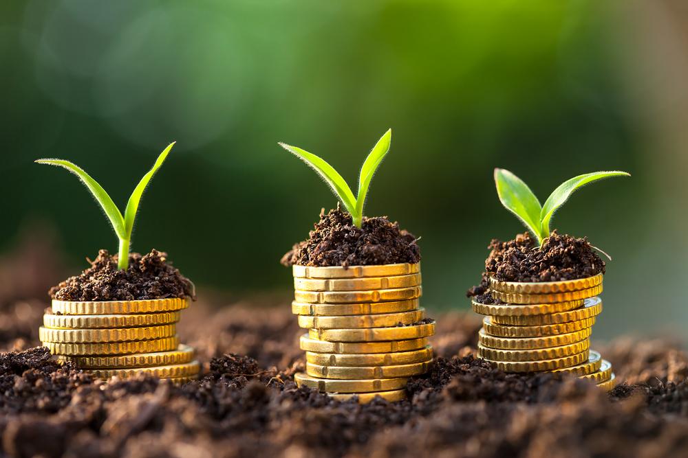 Gouvernance économique: Les Banques de développement ont alloué un montant record de 43,1 milliards$ à la finance verte en 2018