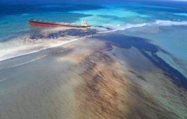 Un navire japonais qui contenait 3800 tonnes d'huile lourde et 200 tonnes de diesel s'est échoué dans des eaux proches de l'Île Maurice( Agence Ecofin)