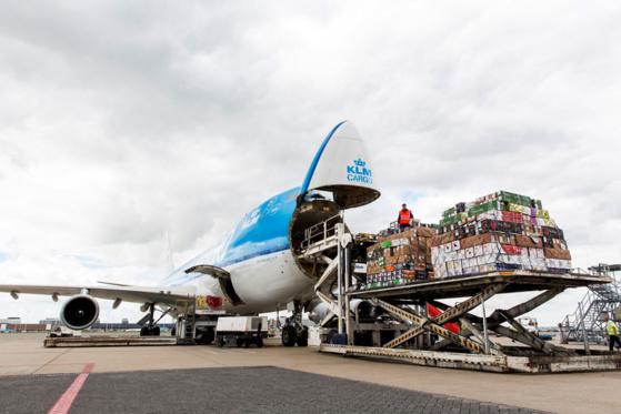 Fret aérien : l'Afrique à la dimension de l'Amérique latine
