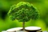 Renforcement des capacités: La CGECI forme ses entreprises membres aux exigences de la finance climatique